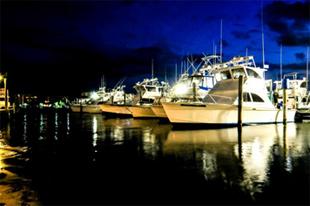 miami-international-boat-show